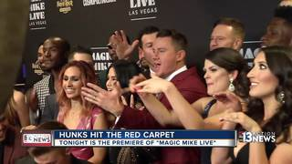'Magic Mike Live' kicks off at Hard Rock Hotel
