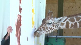 Giraffe collaborates with artist on painting