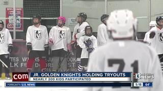 Vegas Golden Knights growing hockey in Nevada