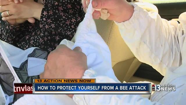 How to protect yourself from a bee attack