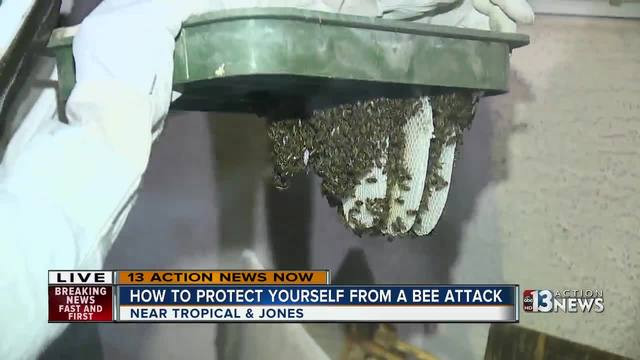 Beehive removal- watch as beekeeper opens sprinkler box to remove bees