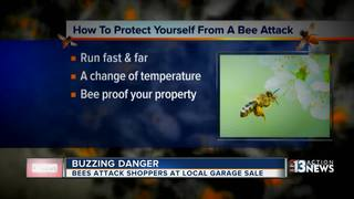 Swarm of bees attack at Henderson yard sale