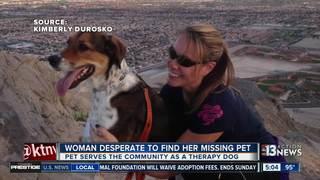 Missing therapy dog worries Lake Las Vegas woman