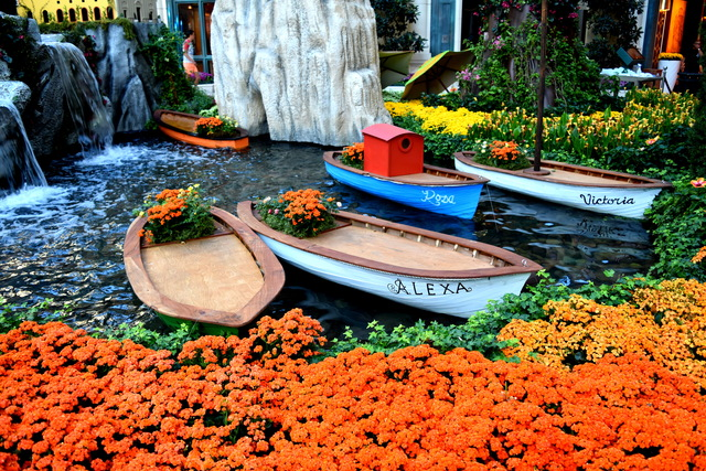 New summer display at Bellagio Conservatory &...