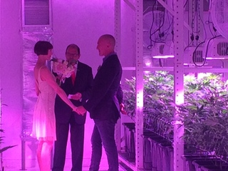 Couple weds in pot facility to back new laws