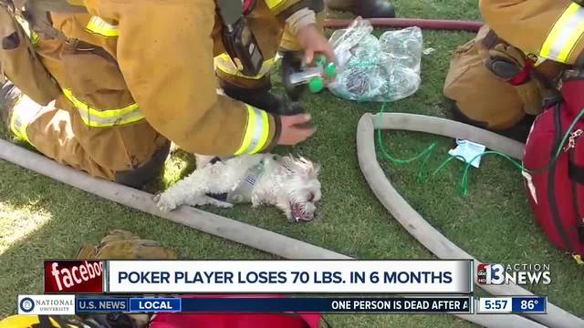 Firefighters save dog using specialized mask