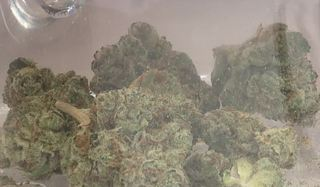 Medical pot patient seeks high court rehearing