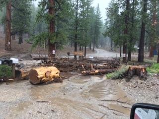 Heavy rain wreaks havoc in Southern Nevada