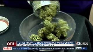 REPORT: Pot may not help PTSD, pain