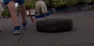 Oregon man defends dogs pulling tires