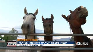 Paradise Ranch unable to perform therapy classes