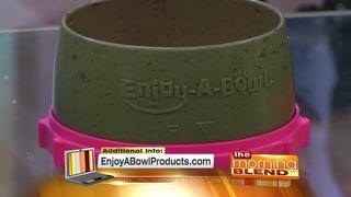 A Revolutionary Pet Bowl