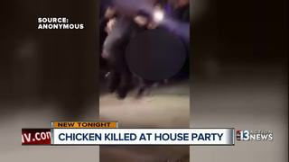VIDEO: Chicken brutally killed at Vegas party