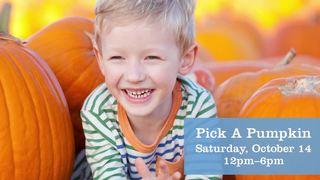 Skye Canyon giving away free pumpkins today