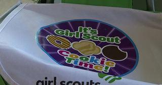 Girl Scouts speaks out on girls in Boy Scouts