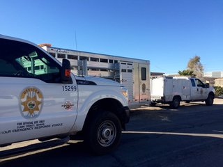 13 horses, 400 pigeons removed from Vegas home