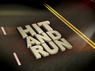 NHP looking for hit-and-run driver