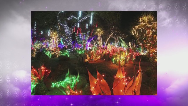 ethel m chocolates to host annual cactus garden lighting