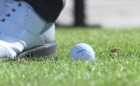 1 October survivor places Top-10 in PGA debut