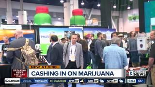 Non-marijuana businesses finding success in pot