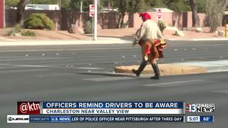 Police use turkey costume to catch bad drivers