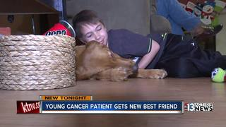 Young cancer patient gets new best friend