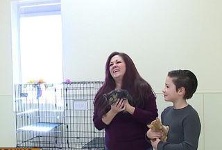 Donations soar for Boulder City boy's birthday