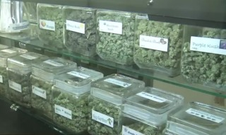 Mother says pot smell is making family sick
