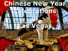 Celebrating Chinese New Year in Las Vegas | 2018