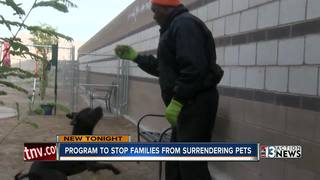 Animal Foundation found way to keep pets at home