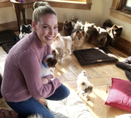 Actress Katherine Heigl helps 12 of rescued Poms