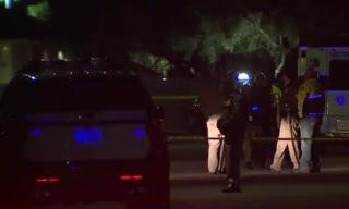 Police: Man fatally stabbed partner inside home