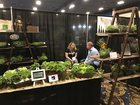 PHOTOS: 2018 Vegas Food Expo