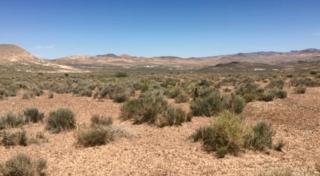 Search for serial burro killer underway in Nye