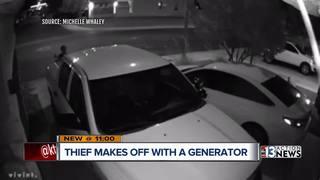 Portable generator stolen on Quiet Peeps Place