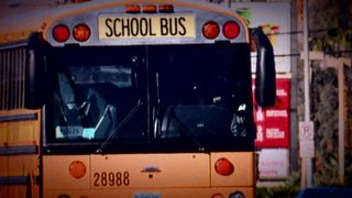 NTSB recommends seat belts on school buses