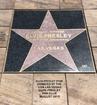 Elvis star on display at Neon Museum