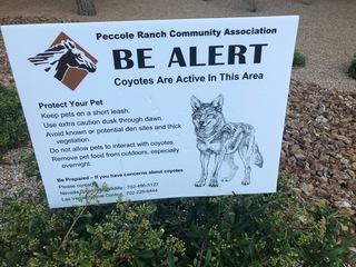 Las Vegas neighborhood taking coyotes seriously