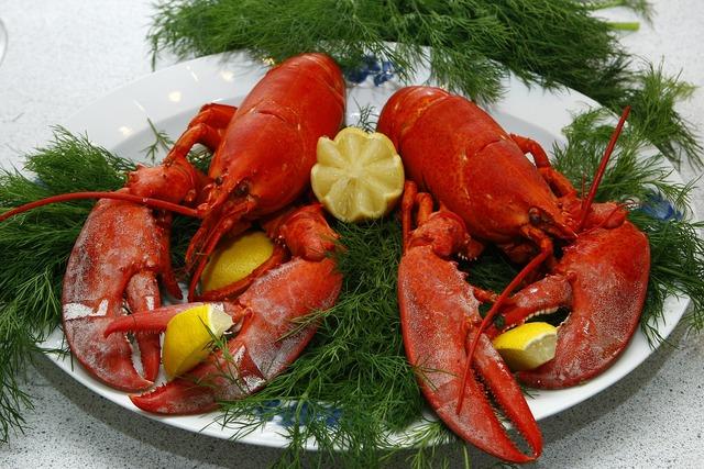 Maine lobster restaurant under investigation