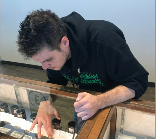 UNLV offers course to help with pot careers
