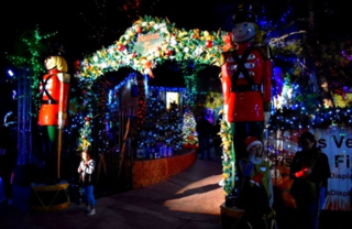 Magical Forest returning for holiday season