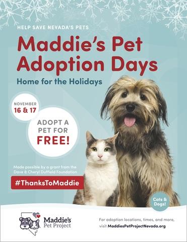 Adopt pet for free during Maddie's Pet Adoption