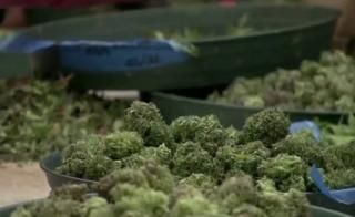 Nevada officials visit CA to explore pot lounges